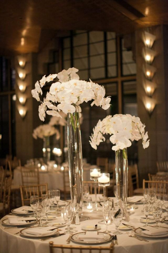 Centerpieces the gorgeous white orchid