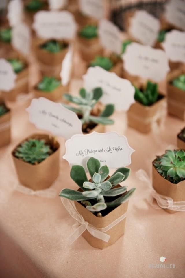 Succulent Wedding Favors And Place Cards 2055192 Weddbook
