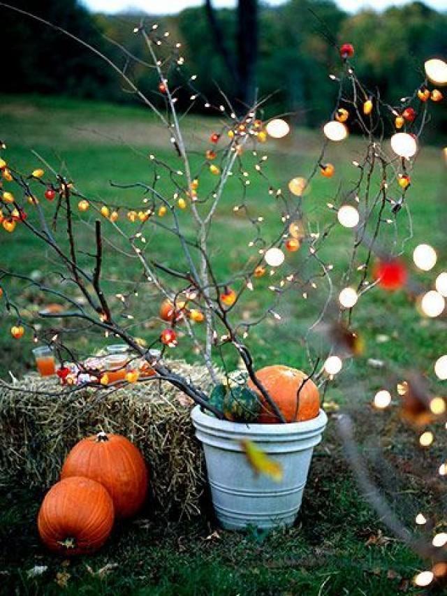 Autumn Wedding Fall Outdoor Decorating 2138425 Weddbook
