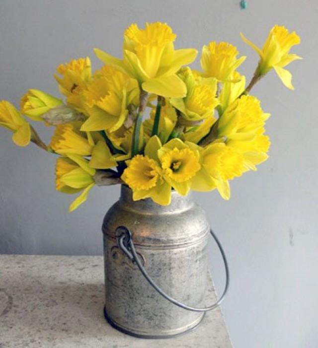 Flores amarillas y su significado
