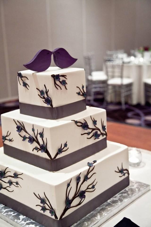 Birds like cake
