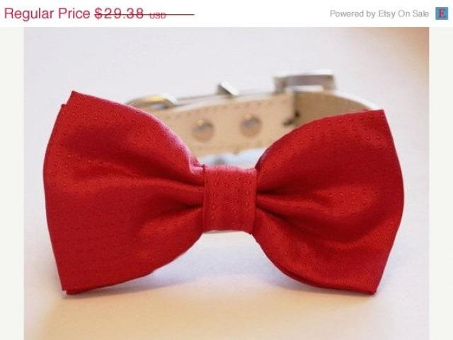 Simple Valentine Bow Adorable Dog - red-dog-bow-tie-valentine39s-day-gift-dog-lovers-red-dog-bow-pet-wedding-accessory-love-red  Image_914076  .jpg