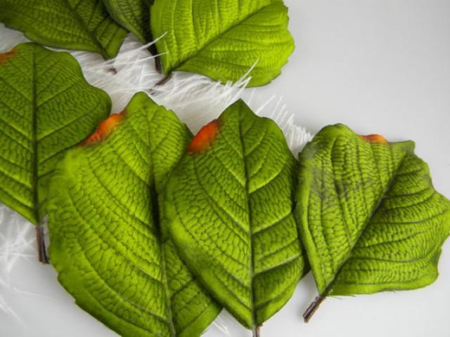 Leaf / Hydrangea Leaves / Floral Supply / DIY Wedding ...