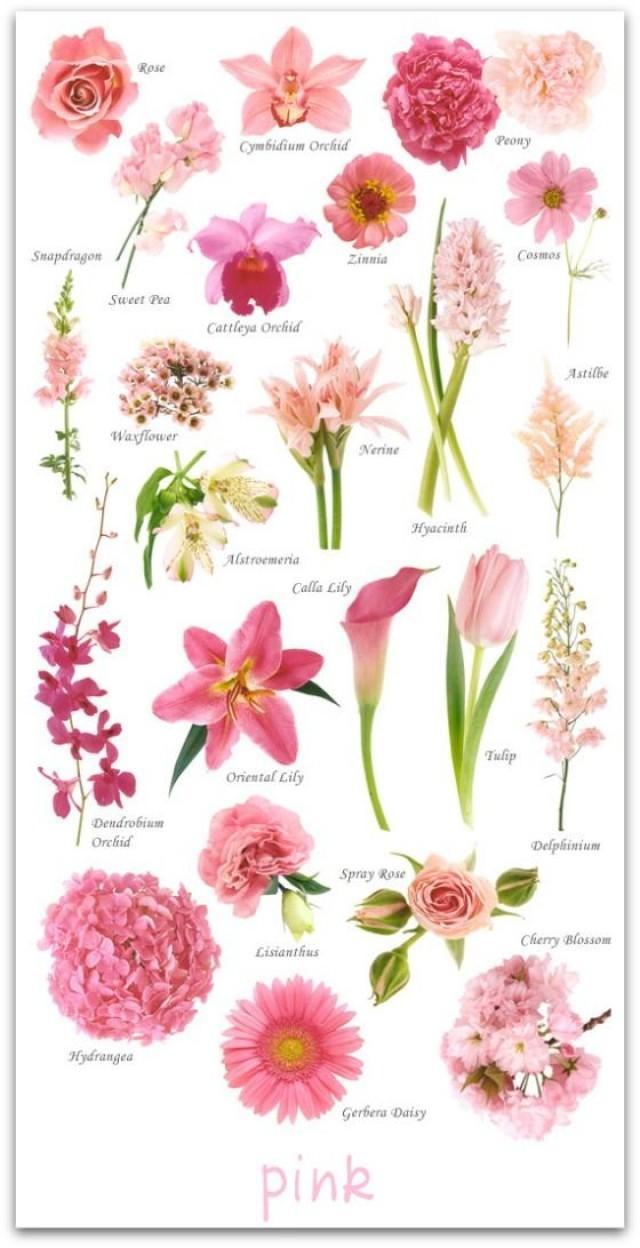 Цветочные имена. Женские имена, посвященные цветам