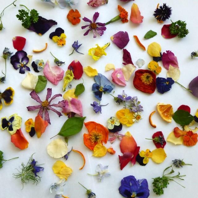 Dried petal confetti dry flowers petal confetti wedding for Dried flowers craft supplies