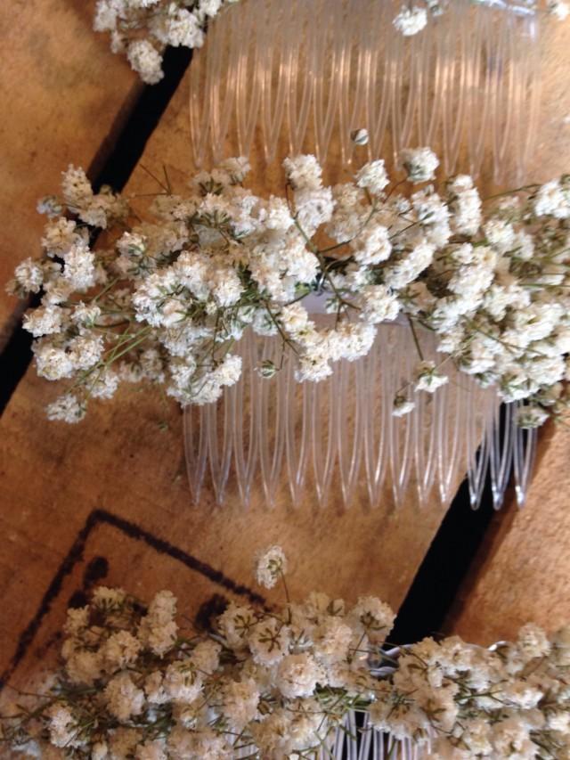 Dried Gypsophila Baby S Breath Las Hair Comb Slide Flowers Wedding Rustic Boho 2589589 Weddbook