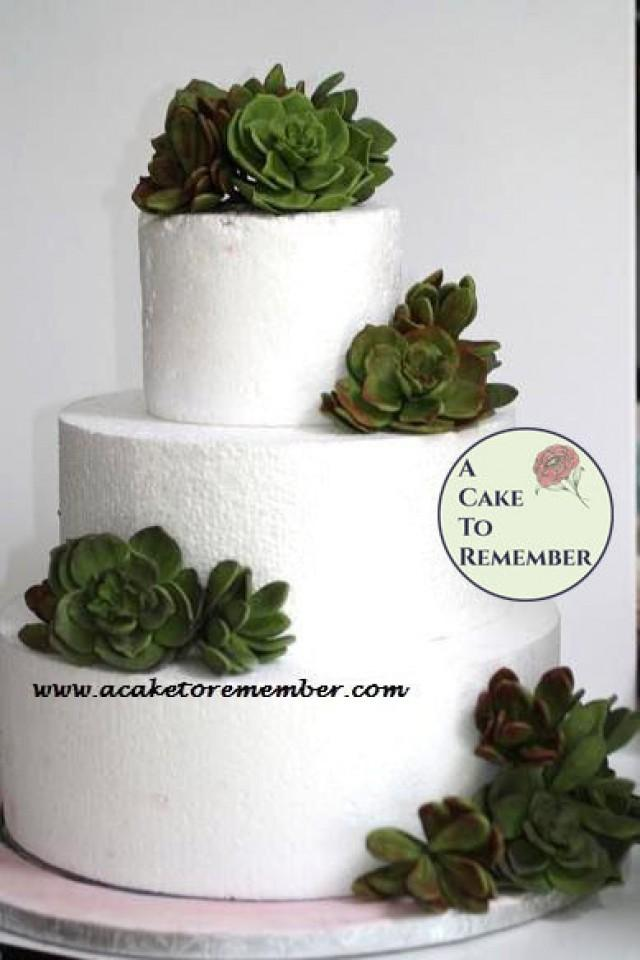 Gumpaste succulent cake topper for wedding cakes edible for How to make edible cake decorations at home