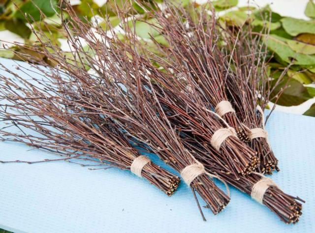 6 Bundles Of Birch Twigs, Birch Bark Wedding Decor, Birch Tree ...
