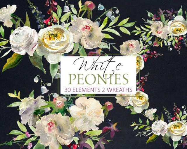White Peony Flowersl Watercolor Clipart PNG Digital Files